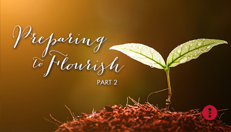 preparing to flourish - part 2