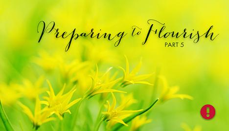 Preparing to Flourish - part 5