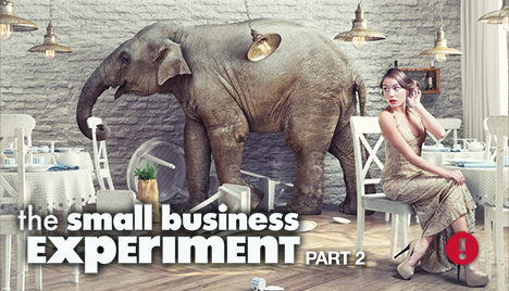 the small business experiment part 2