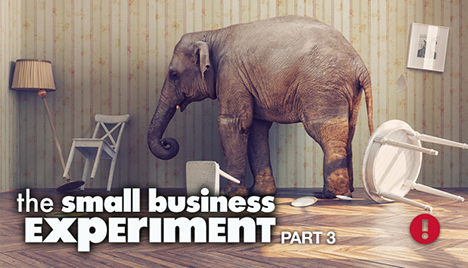 the small business experiment part 3